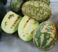 Citron Watermelon