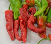 Tunisian Baklouti Pepper