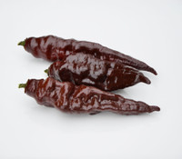 Habanero Pepper, Black