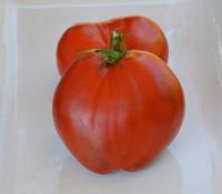 Aunt Anna Tomato