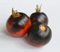 Alki Blue Blood Tomato