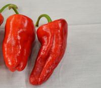 Urfa Biber Pepper