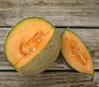 Sierra Gold Melon