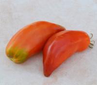 South American Banana Tomato