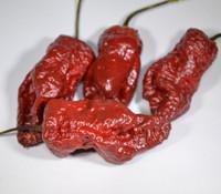 Kraken Scorpion Pepper