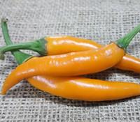 Thai, Golden Pepper