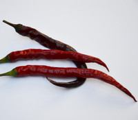 Island Hellfire Pepper