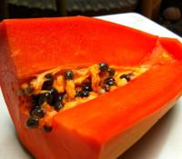 Carica papaya - Red Lady Papaya