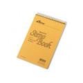 Spiral Steno Book, Gregg Rule, 6 x 9, Green Tint, 60 Sheets