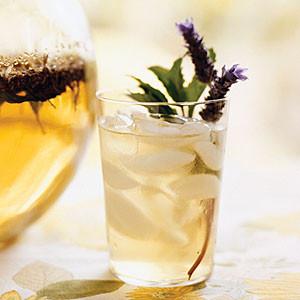 Herbal Tea Iced Tea Collection