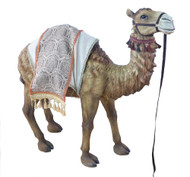 """This beautiful 42""""H standing camel complements the 39"""" Heaven's Majesty Nativity Set. The standing camel is made of fiberglass and resin. The standing camel is suitable for indoor and outdoor use.  Dimensions: 42"""" Height - 37"""" Length - 14"""" Width"""