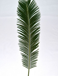 "Bag of Four-Fresh Sago Palm for Palm Sunday comes in a Bag of 4 palms. It's easy to create beautiful arrangements for Palm Sunday with our decorative palms. Clean and convenient to arrange, each bag of Sago Altar Decor includes 4 unstripped palm fronds, 24"" to 36"" high. Just like fresh flowers, our Altar Decor Palms must be refrigerated until ready to arrange.  For the best results, cut stems at a 48 degree angle and place stems in ice water 3 hours prior to arranging"