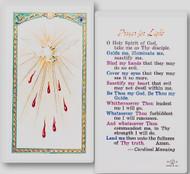 Prayer for Light Laminated Holy Card