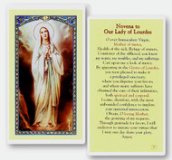 Novena to Our Lady of Lourdes Laminated Holy Card
