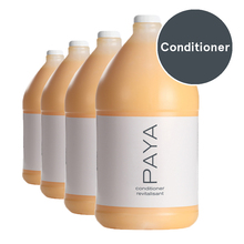 Paya Organics Conditioner (4 gallons/case) (1026207)