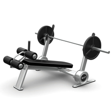 BILT by Agassi & Reyes Decline Bench, Weight Bench, Silver, BCDB01