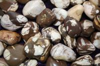 Zebra Stone - Tumbled