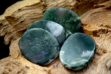 Four moss agate medallions
