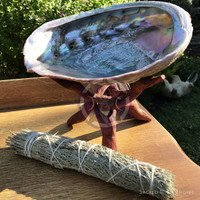 Vintage Red Abalone shell with barnacle attached -1950's - Jumbo, Extra Large, with sage smudge stick and an adjustable wooden stand.