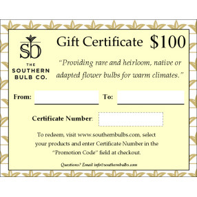 Give the gift of heirloom flower bulbs to your favorite new home owner, graduate or gardener.
