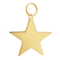 Super Star 14k Gold Charm