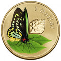 2011 Air Series – Birdwing Butterfly $1 Frosted Uncirculated Pad Printed Coin