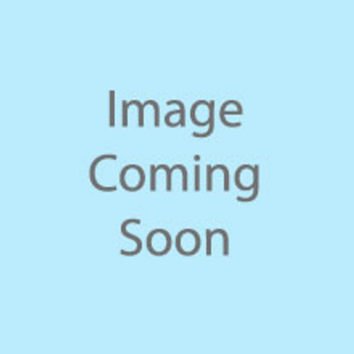 6000-124 1/8-27 NPT 316SS Plug