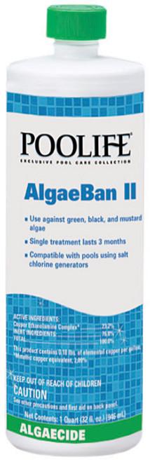poolife® AlgaeBan II Algaecide 1 qt bottle