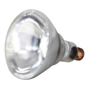 381136, 38-1136, Infra-Red Lamp (Pk 12), Infra-Red Lamp (Pk 12) - 38-1136, Elements and Warmer Bulbs, Shatter Resistant Warmer Bulbs, ,