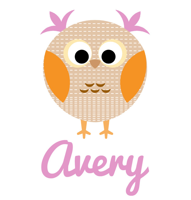Girl S Name Purple Amp Brown Owl Baby Bib Personalised