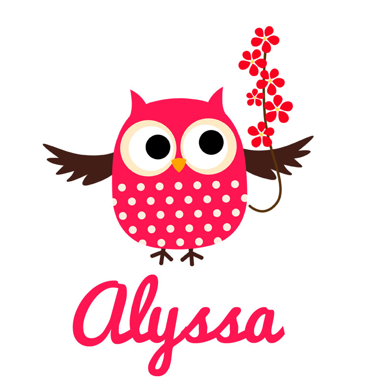 Girl S Name Pink Flower Owl Baby Bib Personalised