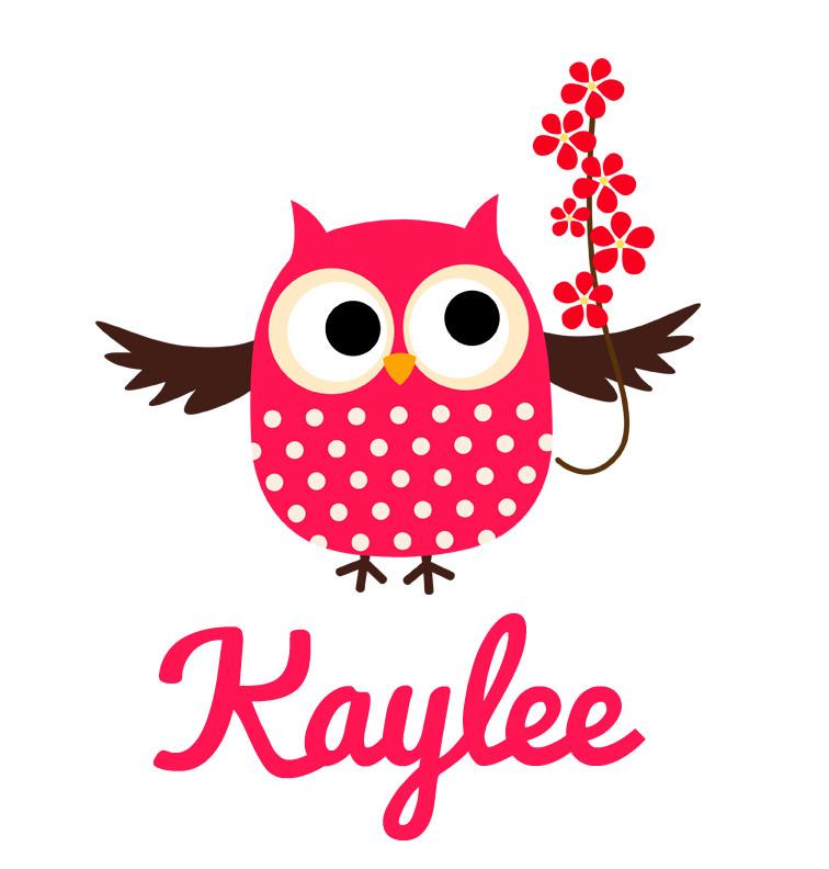 Pink Flower Owl Baby Name Blanket Personalised Baby