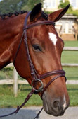 Galway Bridle