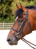 Dy'on Working Collection 'Classic' Flash Bridle