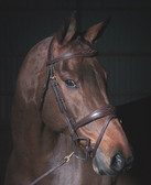 Dy'on Anatomic Flash Noseband Bridle with Fancy Stitching