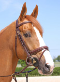 Dy'on Collection Large Flash Noseband Bridle