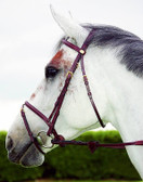 Dy'on English Collection Flash Noseband Bridle