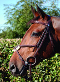 Dy'on New English Collection Figure 8 Noseband Bridle
