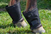 Fetlock Shield
