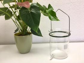 Glass Bucket - 2 Qt - Top Handle