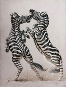 Tretchikoff 'Fighting Zebra' Canvas Art Print