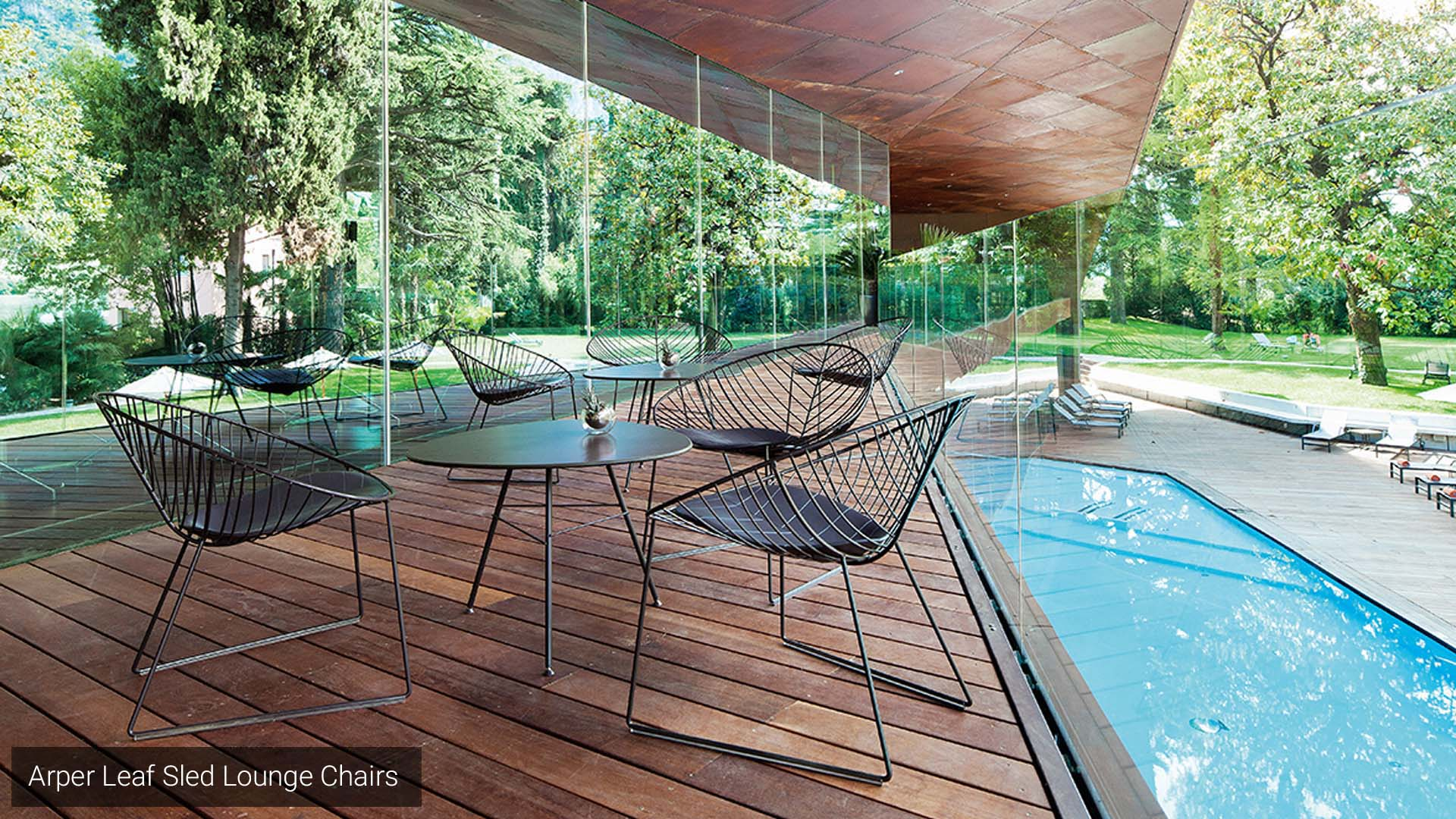 Arper Leaf Sled Lounge Chair