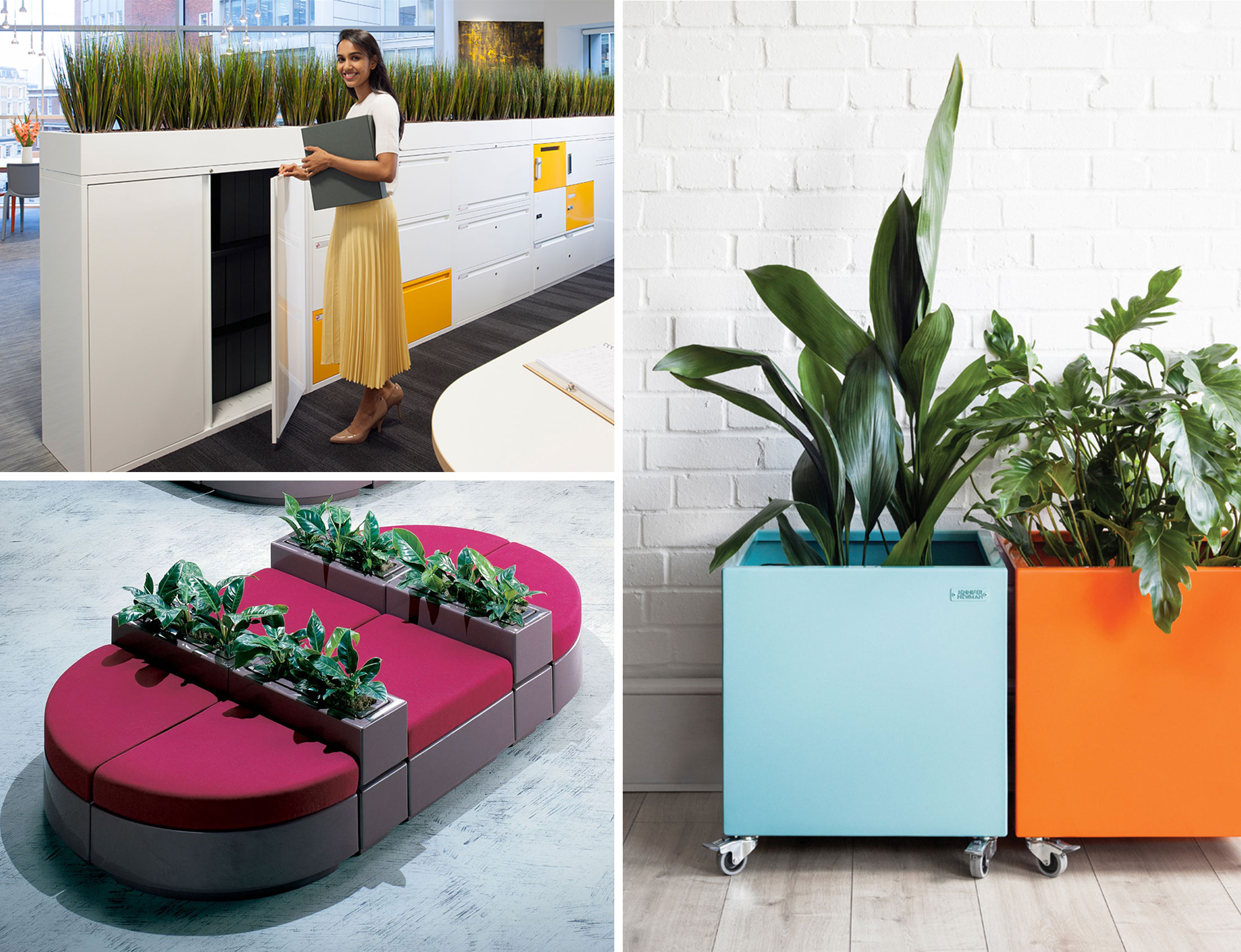 Biophilia in the workplace examples