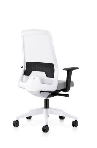 Every IS task chair ,white mesh with adjustable arms and lumbar