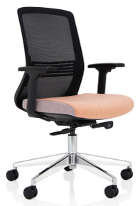 Elite Vida Mesh Task Chair