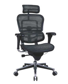 Mesh ErgoHuman Chair