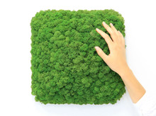 Nordgrona acoustic moss tile in green