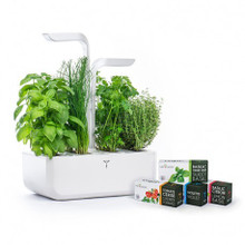 Veritable Classic Indoor Garden / Planter With Lingots