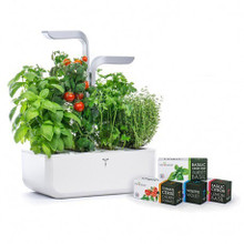 Veritable Smart Indoor Garden / Planter with Lingots