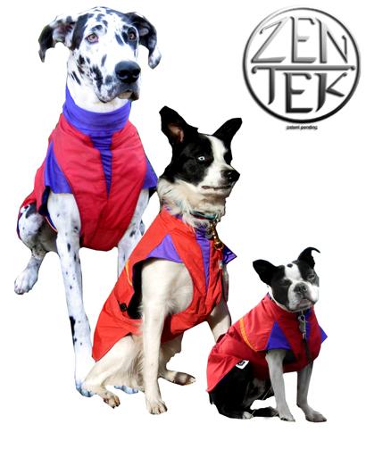 three-bw-dogs.jpg